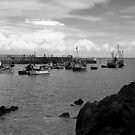 Mevagissey by Country  Pursuits
