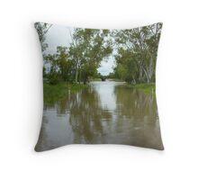 Wombarella Creek Throw Pillow