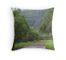 Dog Chain Creek Throw Pillow