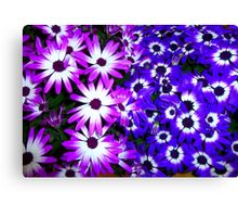 Flowers For You RB Community  Canvas Print