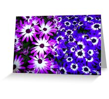 Flowers For You RB Community  Greeting Card