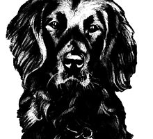 Black Lab Beauty Graphic ~ black and white by Jane Oriel