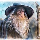 Gandalf by jankolas