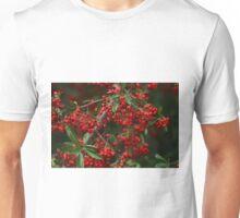 Pyracantha Berries Unisex T-Shirt