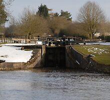 Snowy Locks at Tyrely by DavidFarm