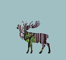 Forest deer by pahit