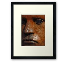 The Iron Mask Framed Print