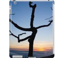 Tree at Sunset iPad Case/Skin