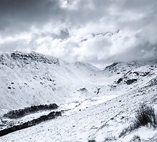 Grisedale Valley by Colin Payne