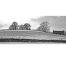 Winter trees, Yorkshire Dales Photographic Print