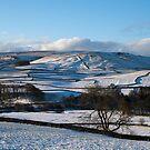 Thorpe view, Yorkshire Dales by Rebecca Mason