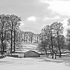 Wharfedale winter trees  by Rebecca Mason
