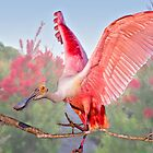 Pink Wings by Bonnie T.  Barry