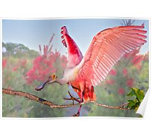 Pink Wings Poster