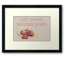 Banner - LIS - Challenge Winner Framed Print