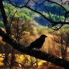 Shamanic Crow by KristaDawn