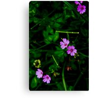 Nature, the greatest artist Canvas Print