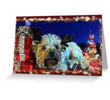 Terrier Christmas cards Greeting Card