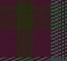 01258 Pinecone Purple Fashion Tartan Fabric Print Iphone Case by Detnecs2013