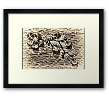 Shell's Party... Framed Print