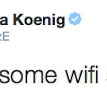 Ezra Koenig tweets about introverted internet by rpride
