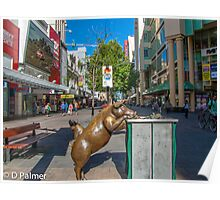 Rundle Mall - Looking down the Rundle Mall past the Pigs Poster