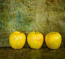 Three Golden Apples by Barbara Ingersoll
