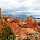Bryce Canyon National Park,Utah USA...The Storm is coming by Anthony & Nancy  Leake