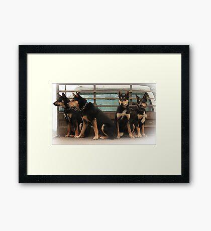 Working Class Framed Print