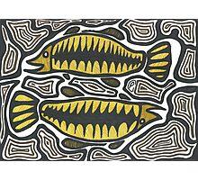 Goodoo (Fish) Photographic Print