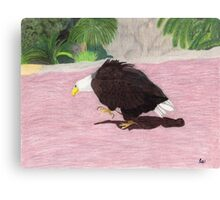 Lonely Eagle Canvas Print