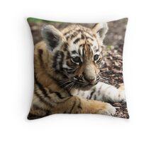 A cute cub Throw Pillow