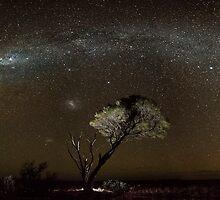 Nullabor Dreaming - Yakadunya, Western Australia by Liam Byrne