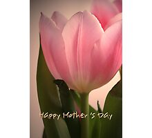 Pink Tulip Happy Mother's Day card Photographic Print