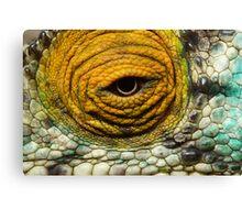 Chameleon Eye Canvas Print