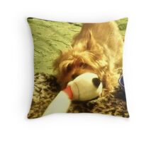 How To Get A Lazy Dog To Exercise: Tie Favorite Toy to Bedpost Throw Pillow