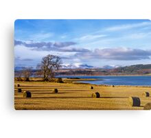 The Beauly Firth and Ben Wyvis Metal Print