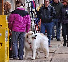 Busy sidewalk by vigor