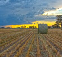 Oaten Hay .. Evening Light. Sticker