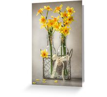 Mini Daffs Greeting Card