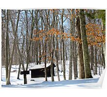 New England Winter Poster
