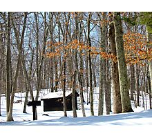 New England Winter Photographic Print