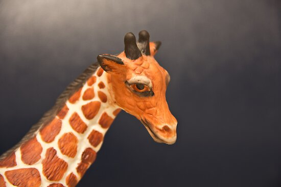 Giraffe My Pretty by Judi FitzPatrick