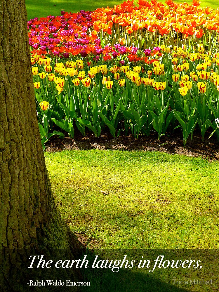 The Earth Laughs in Flowers - Tulips at the Keukenhof Gardens - the Netherlands by Tricia Mitchell