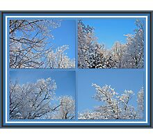St. Valentine's Day Snowstorm Photographic Print