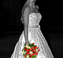 The Lovely Bride by Gene Walls