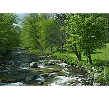 Spring on the Tweed River Photographic Print