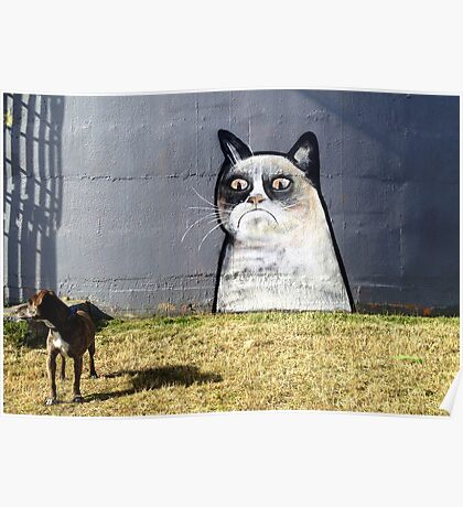 Cat looking grumpy in the dog park Poster