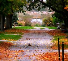 The road to Autumn by Corinnelyn