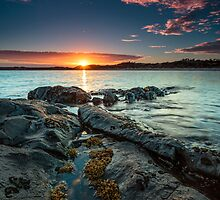 New Day, East Beach, Low Head, Tasmania, Australia by fotosic